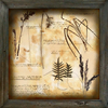 Decorative Painting botanical 2