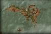 Fyke-Isle
