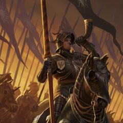Ard Feainn Heavy Cavalry