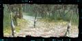 Thumbnail for version as of 18:07, November 16, 2008