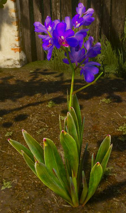 File:Tw3 Blue Lotus.png