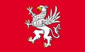 Flaga Liga z Hengfors
