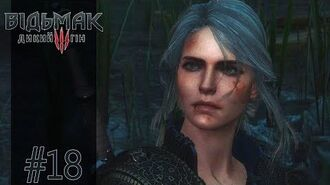 THE WITCHER 3 Enhanced Edition 18 PL 1440p 60 FPS