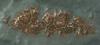 Tw3 map faroe