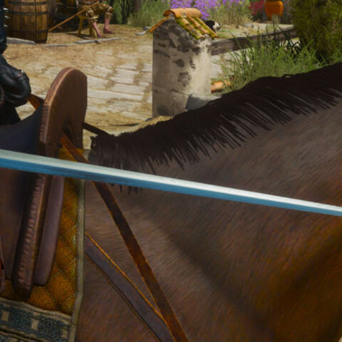 In <i>The Witcher 3</i>