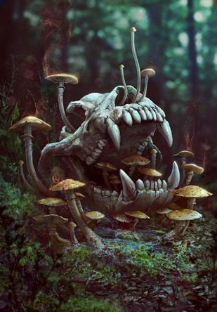 File:Tw3 cardart skellige special mushroom.png