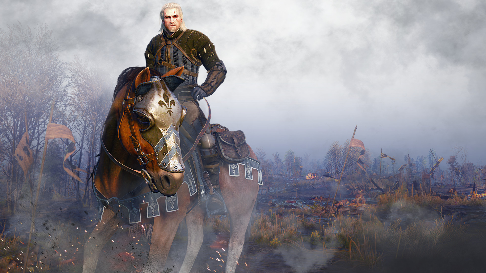 the witcher - photo #38