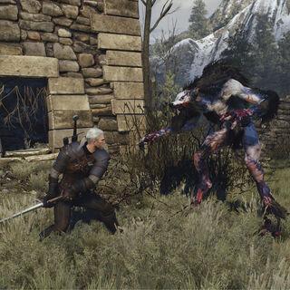 Geralt fighting Ulfhedinn