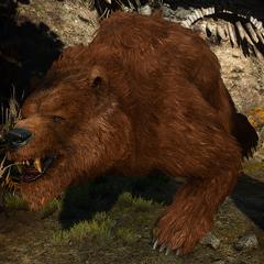 Olaf the bear