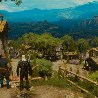 Majordomo introducing Geralt to his estate.