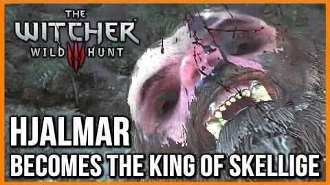 Witcher 3 The Horrible Berserker's Ritual, Hjalmar Becomes King of Skellige