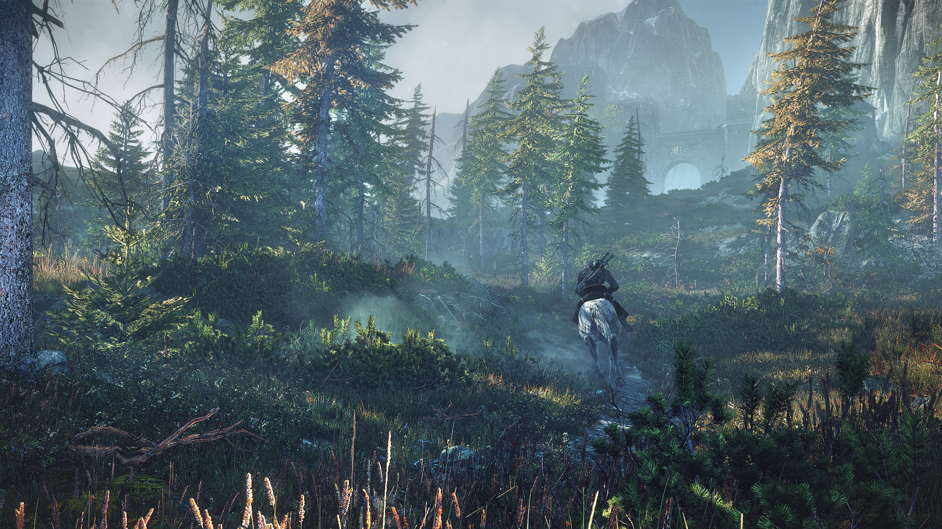 Witcher3Wilderness