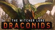 What are Draconids? The Witcher 3 Lore - Draconids
