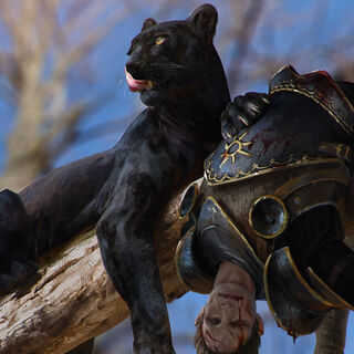 Panther Gwent card art