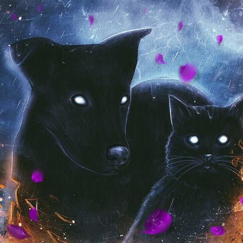 Чорна Кішка й Чорний Пес, арт у виконанні Dratova