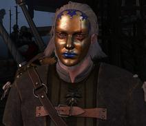 Tw3 harlequin mask on geralt