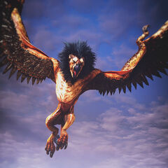 Griffin creature witcher wiki fandom - A picture of a griffin the creature ...