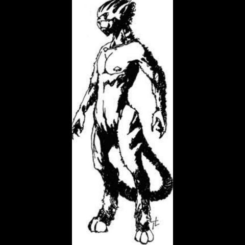 Kočkodlak v papírové hře Wiedźmin: Gra Wyobrazni