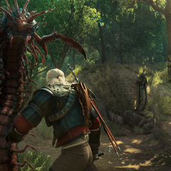 Geralt encounters giant centipedes