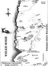 Nilfgaard-region-grawyobrazni