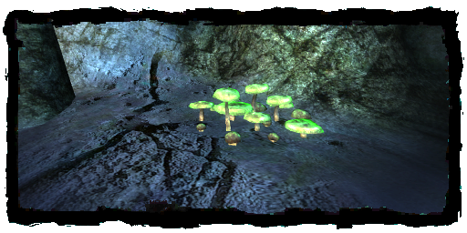 File:Places Psilocybe patch.png
