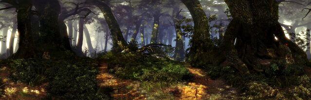 File:Forests of Flotsam.jpg