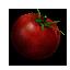 Tw3 tomato