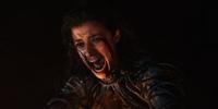 Netflix Yennefer releasing chaos
