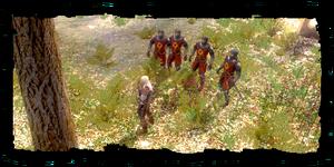 Geralt with order posse