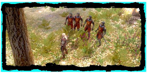 File:Geralt with order posse.png