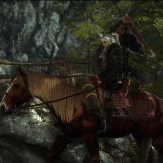 Roach, in The Witcher 2.