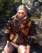 Tw2 screenshot armor kaedwenileatherjacket