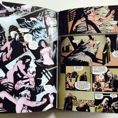 Some more pages of the German Special edition of The Witcher comic book
