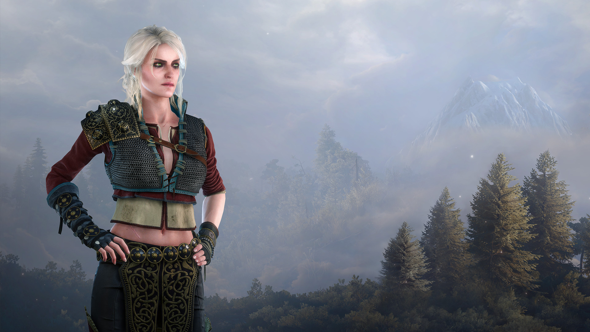 Alternative look for Ciri | Witcher Wiki | FANDOM powered by