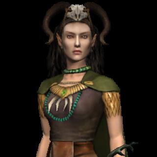 the elven sorceress