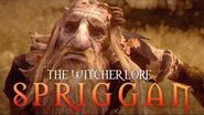 What is a Spriggan? - The Witcher Lore - Spriggans