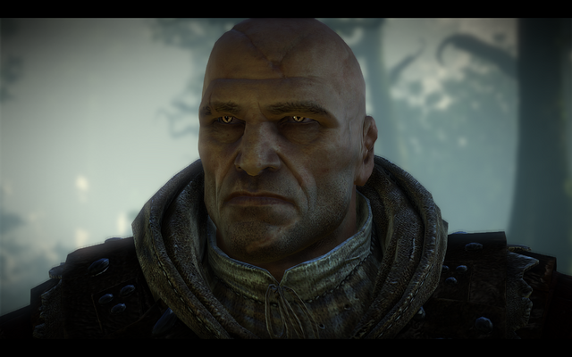 File:Witcher2-kingslayer-001.png