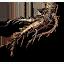 Tw3 allspice root
