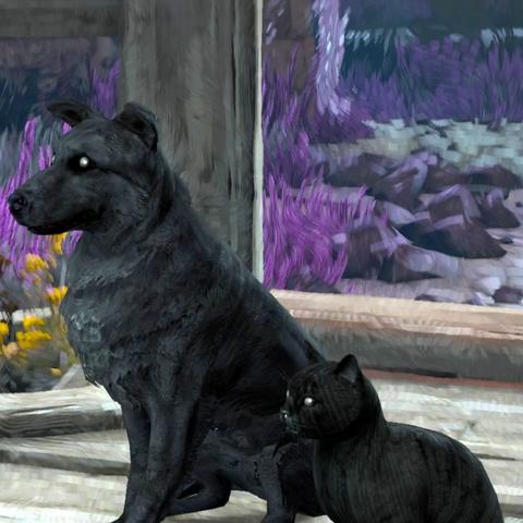 Чорна Кішка й Чорний Пес у доповненні «Серця з каменю»