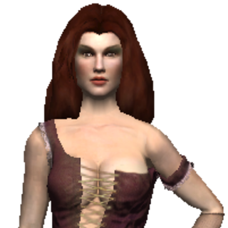 Game model in <i>The Witcher</i>