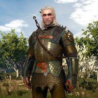 Mastercrafted Griffin Armor Witcher Wiki Fandom