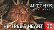 The Witcher 3 Destroying the Druid Spirit in the Tree's Heart - Story & Gameplay 35 PC