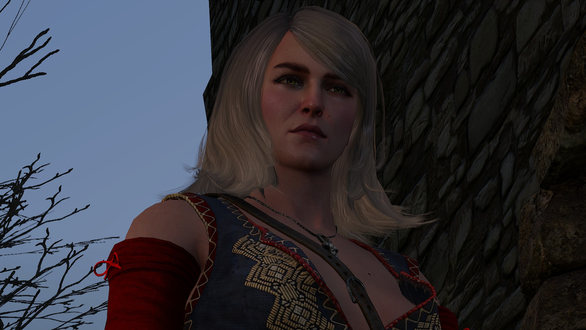 For the advancement of learning witcher wiki fandom powered by wikia for the advancement of learning stopboris Image collections