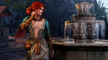 Tw3 Alternate look for Triss