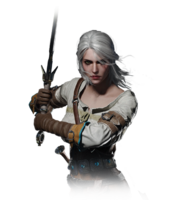 Tw3 journal ciri