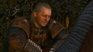 Vesemir-Witcher 3 Wild Hunt