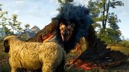 Witcher 3 Royal Griffin Boss Fight (Hard Mode) (4K 60fps)