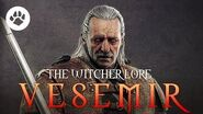 The Witcher Vesemir - Who is Vesemir? - The Oldest Witcher