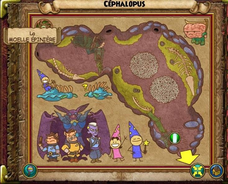 Céphalopus