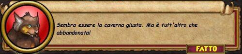 Conti6